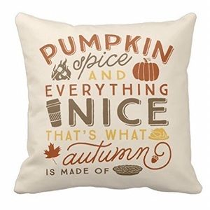 Other - Pumpkin Spice Fall Plush Throw Pillow Cover